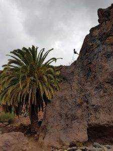 e5a6ddfd f687 474a 837c 5d6c68086113 225x300 - Abseilen in Gran Canaria